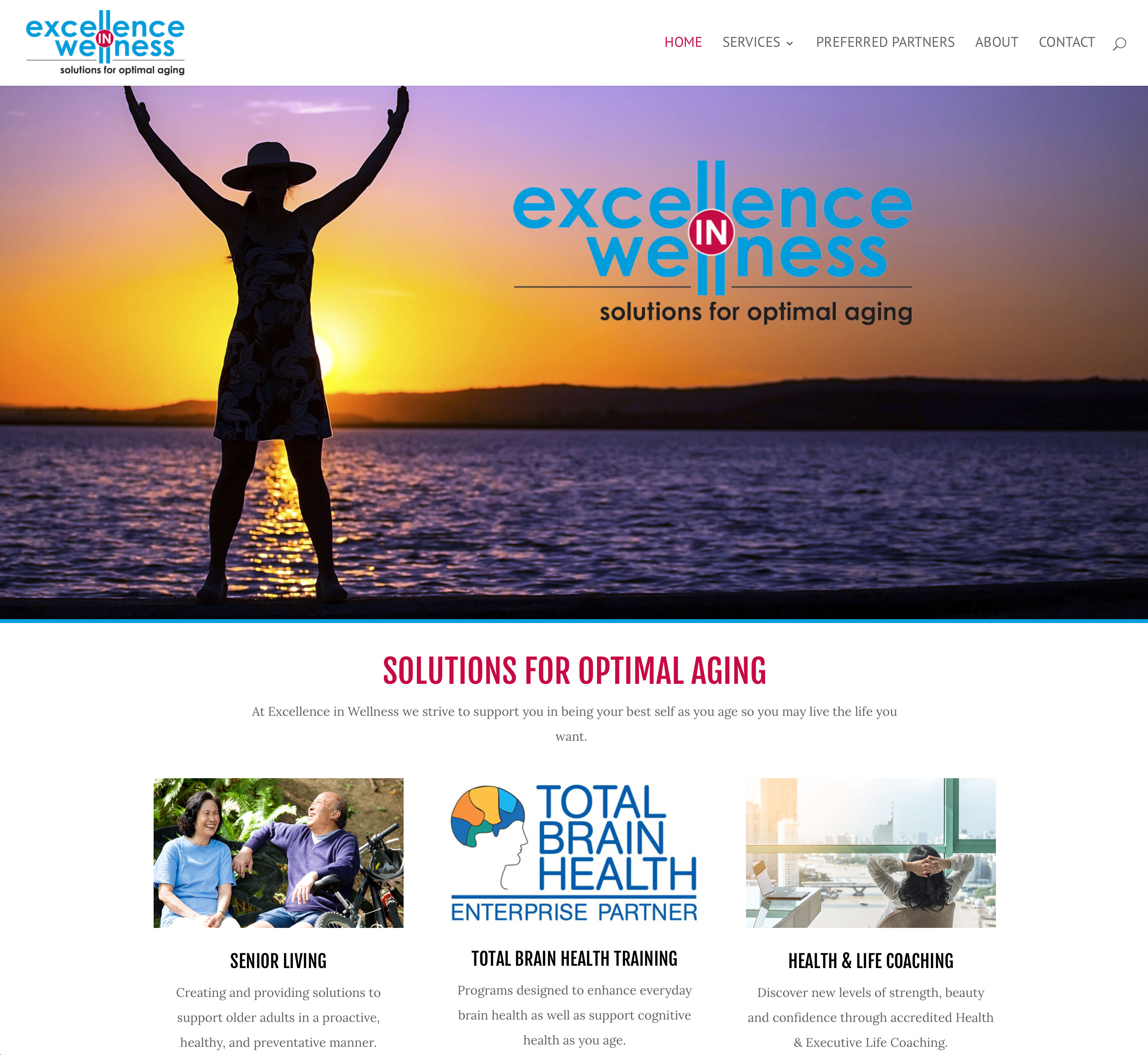 Excellence in Wellness website